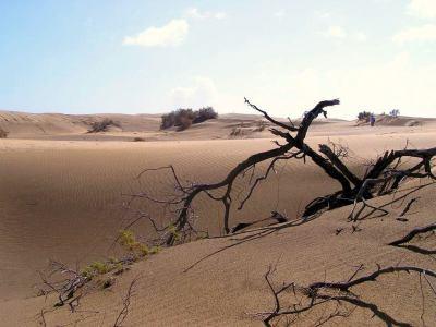 Die Dünen sind ein Traum-Ziel im neuen Film.