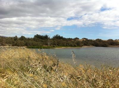 Der Salzsee in Maspalomas soll strenger geschützt werden.