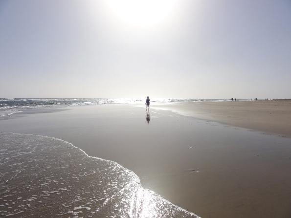 Ausgezeichnet: Die Strände von Playa und Maspalomas sind top!